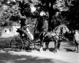 [Man and woman in horse drawn carriage in Plainfield, New Jersey]