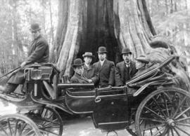 [Men from the Japanese Embassy in a carriage in front of the Hollow Tree]