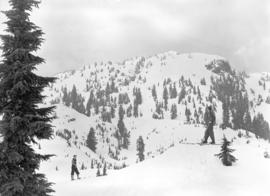 [View of skiers on the slopes of Mt. Seymour]