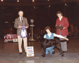 Best Canadian Bred Puppy in Show award being presented at 1974 P.N.E. All-Breed Dog Show [Labrado...