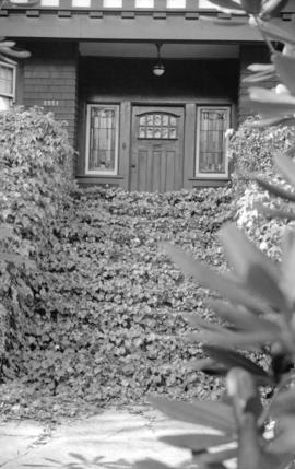 [Entrance to house with ivy covered steps]