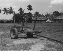 Empty sugarcane cart