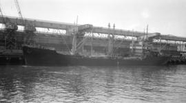 M.S. Napo [at dock]