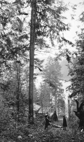 [Woman and boy in wooded area on] Bowen Island