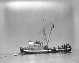 """Cape Caution"" hauling in nets"