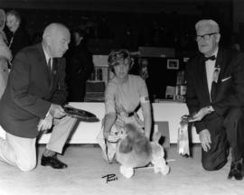 Judge and P.N.E. Advisory Director D.H. Collister presenting Best Toy in Group award at 1965 P.N....