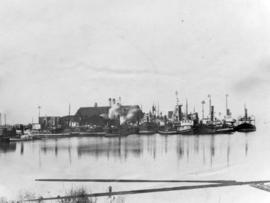 [Tugboats adorned with Christmas trees at dock at Hastings Sawmill]