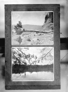 One negative with two images: Wreck of a tree on the beach, Stanley Park, Vancouver, B.C.  and La...