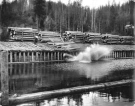 Eagle Lake Sawmills, Giscome, B.C.  Dumping the loads at mill