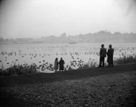 [People watching ducks and other birds on Lost Lagoon]
