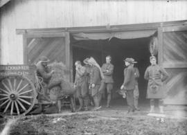 29th Battalion and Yukon Detachment [Men unloading hay from a wagon]
