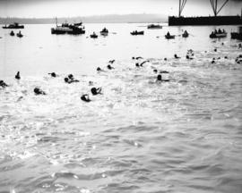 Burrard Inlet swim [in progress]