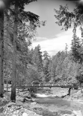 Bridge [over river near] Qualicum, Vancouver Island