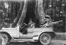 [Three men in a British Daimler car in front of the Hollow Tree]