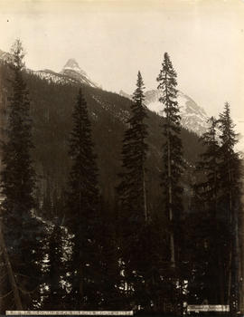 Mount Sir Donald, C.P.R. Selkirks, Height 10,645 feet