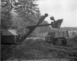 [Clearing land for] Pacific Mills [on the] Queen Charlotte Islands