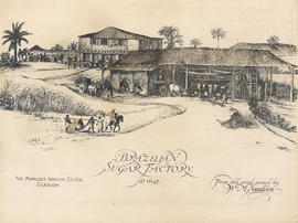 17th Century Brazilian Sugar factory [1647]