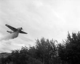 [Water bomber dropping water on trees near Kamloops]