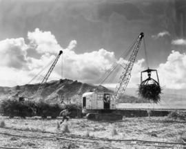 "2 Lihue, Island of Kauai, two P&H loaders powered by ""Caterpillar"" diesel engines l..."