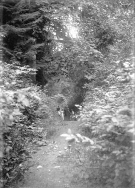 [Men and women standing on trail at Stanley Park]