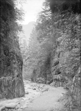 [Cathedral canyon at Indian River]