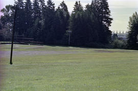 Field at Stanley Park