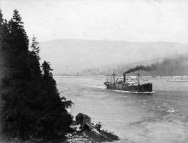 Harrison liner entering Narrows