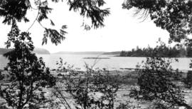 View of trees, water and islands in the background