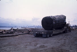 Logs for Lumberman's Arch - 2 [1 of 18]