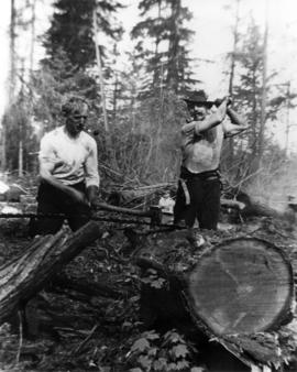[Mr. Mark Mount and Mr. McRae felling trees at 3379 West 22nd Avenue]