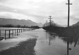 [View of road covered by water in Pitt Meadows]
