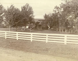 [Unidentified house behind trees]