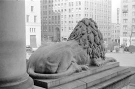 Court House lion [from the rear] looking towards the Medical Dental Building [on Georgia Street]