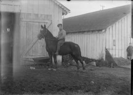 [Soldier on bareback horse in front of barn]