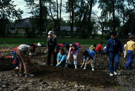 Education : planting children's garden