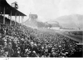 Crowd in Grandstand watching horse race