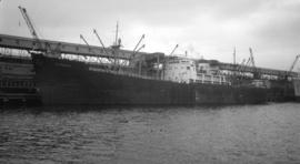S.S. Stanhope [at dock]