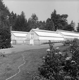 Greenhouses at Stanley Park, installation of gas lights